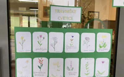 Travnik – cvetlice (ND, 2. razred)